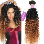 Beauty Youth Ombre Hair Extension Brazilian Virgin Hair 1B#30 3pcs/lot Ombre Kinky Curly Hair Extension