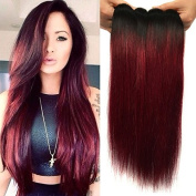 Black Rose Hair Two Tone Straight Ombre Hair Extensions 7A Peruvian Virgin Hair Straight Human Hair Weave 3 Bundles 1B/99J Black+Burgundy 100g/pcs