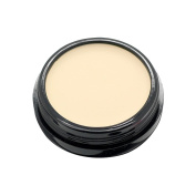 Mallofusa Single Colour Face Makeup Concealer Foundation Palette Moisturising 15ml