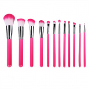 12 Piece Makeup Brushes Set Professional Synthetic Cosmetic Kabuki Makeup Foundation Blush Eyeshadow Concealer Powder Brushes Kit with Pouch