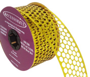 ACI PARTY AND SPIRIT ACCESSORIES Honeycomb/Punchinella Ribbon, Gold