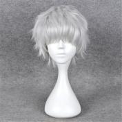 Kadiya Cosplay Wigs Short Silver White Fluffy Fashion Anime Wig