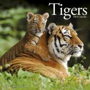 Tigers Calendar 2018