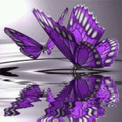 Fipart DIY diamond painting cross stitch craft kit. Wall stickers for living room decoration.butterfly