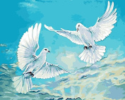 Arts Language Wooden Framed 41cm x 50cm Picture On Wall Acrylic Paint by Numbers Diy Painting T1268 Pigeon Blue Sky