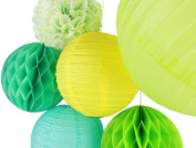 SUNBEAUTY Pack of 6 Yellow Greenery Paper Lanterns Tissue Pom Poms Honeycomb Balls for Spring Summer Party Hanging Decor