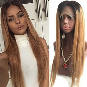 Fennell Silky Straight Brazilian Human Hair Blonde Ombre Lace Front Wig With Baby Hair Human Hair Full Lace Wig Ombre Wigs(25cm - 70cm )