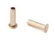 0.2cm Dia. 0.8cm Long Brass Rivets