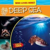 Deep Sea (Fast Track