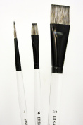Beginner Brush Set for Paint It Simply