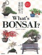 What's Bonsai? (Cool Japan)
