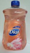 DIAL HIMALAYAN PINK SALT & WATER LILY 1540ml REFILL