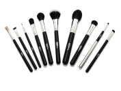 Ultima 10-Piece Professional Make-up Brush Kit