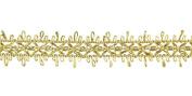 Belagio Enterprises 2.5cm Metallic Braid Trim 25 Yards, Gold