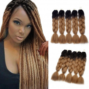 Jiameisi 60cm Two Ombre Kanekalon Braiding Hair 1Pcs /100g Synthetic Braid Hair Extensions