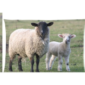 sheep with lamb Zippered Pillow Cases Cover 50cm x 80cm