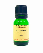 Ravensara Essential Oil - 100% Pure Organic Therapeutic Grade Ravensara Aromatica Oil in a 10ml UV Protected Green Glass Euro Dropper Bottle.