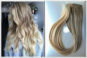 60cm Straight Full Head Ombre Dip Dyed Clip-in Hair Extensions 6pcs Pack (Col. Ash brown to sandy blonde) DL