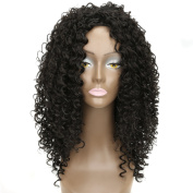 AISI HAIR Synthetic Afro Wigs Long Hair Curly Wig Heat Resistant Fibre Curly Wigs for Black Women