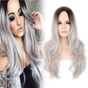 YongerBeauty Ombre Grey 2 Tones Dark Roots Synthetic Lace Front Wig Long Natrual Straight Sliver Grey Replament Hair Wig for Women Heat Resistant Half Hand Tied Fibre Hair Wig