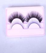 A pair of Eyelash