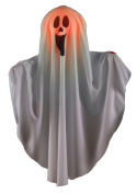 Colour Changing Scream Face Boo Ghost Halloween Hanging Decoration