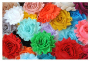 YYCRAFT (30 pieces) Solids Shabby Flowers - Chiffon Fabric Roses - 6.4cm Assorted Colour Mix