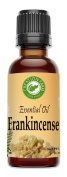 Frankincense Oil - Aceite esencial de incienso - Frankincense Essential Oil 30 ml - 100% Pure