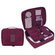 ColorMixs Clear Cosmetic Makeup Bag Travel Wash Organiser Kit Waterproof Bathroom Storage Toiletry Bag For Men Women Wine Red