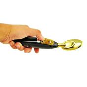 Careshine Microcurrent Galvanic Bio Face Tightening Lift Deluxe Golden Spoon