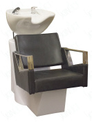 Executive Series Shampoo Chair By Skin Act