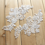 25cm x 10cm Silver Corded Embroidery Lace Applique Bridal Veils Wedding Supplies Lots of 6 Pieces