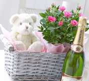 Luxury Baby Girl Champagne Hamper - Exclusive to The Gift Box