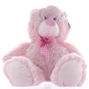 34cm Pink Baby Girl Teddy Bear Soft Toy Plush Wearing Pink & White Cheque Ribbon