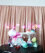 TRLYC Matt Blush 2.4m x 2.4m Sequin Wedding Backdrop Sequin Curtain