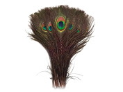 Peacock Feathers - 25cm - 30cm Natural Peacock Feathers - 200 Peacock Feathers