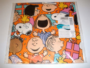 Hallmark Vintage Peanuts Gang & Snoopy Pkg Gift Wrap Wrapping Paper - Birthday, Any Occasion