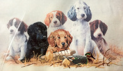 "1987 Dimensions 50cm x 30cm Stamped Crewel Embroidery Kit #3410cm School Daze"" Dogs"