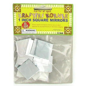 Miniature Crafting Mirrors - Case of 72