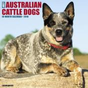 Just Australian Cattle Dogs 2018 Wall Calendar