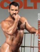 Hairy Chested Men 2018 Calendar