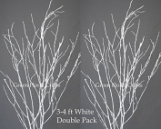 GreenFloralCrafts Birch Branches (12 Pack), 0.9m - 1.2m, Snowy White