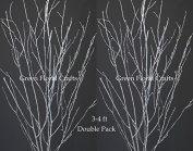 GreenFloralCrafts Birch Branches (10 Pack), 0.9m - 1.2m, Silver