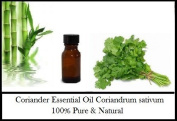 Coriander (Coriandrum sativum) Essential Oil 100% Pure & Natural