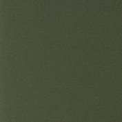 LaCarte Dark Green Pastel Paper Pack of Five - 50cm . X 60cm .