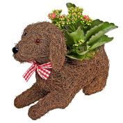 Luludi Living Art Puppy Pal