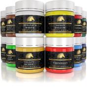 Acrylic Paint Set - 12 x 100ml Bottles - Artist Quality Art Paints - MyArtscape
