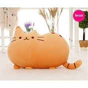 Cat Cushion Emoji Pusheen Brown For Kids And Parents