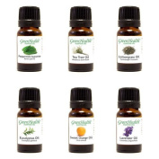 Top 6 100% Pure Therapeutic Grade Essential Oil Gift Set - 6/10ml (Lavender, Tea Tree, Eucalyptus, Lemongrass, Sweet Orange, Peppermint) Great for Aromatherapy. by Greenhealth
