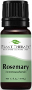 Rosemary Essential Oil. 10 ml. 100% Pure, Undiluted, Therapeutic Grade. by Plant Therapy Essential Oils